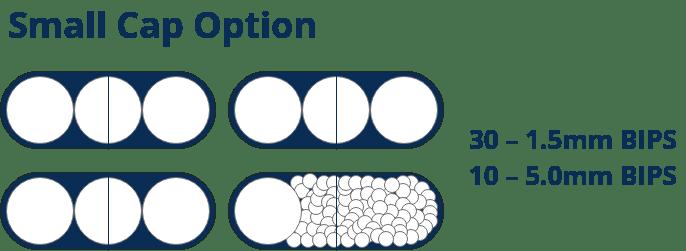 Small Caps Option