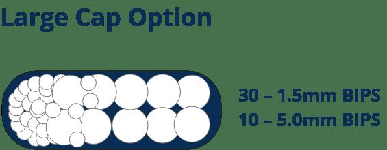 Large Cap Option